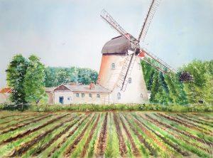 Alte Holländer Mühle in Wittingen Ohrdorf
